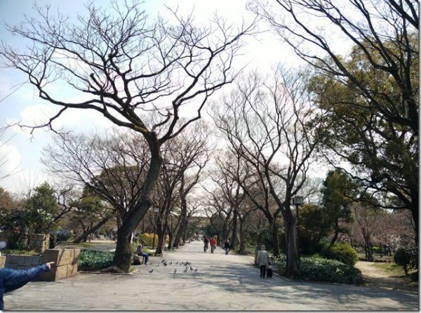 2016日本九州京阪小人同行大阪自由行之心齋橋篇